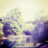 lago-mariotti-rimini