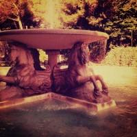 Rimini's Quattro Cavali Fountain