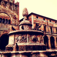 Pigeons Perched on the Pigna Fountain Piazza Cavour